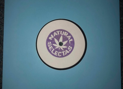 Anatta Sound is the fifth vinyl release for Natural Selectas.