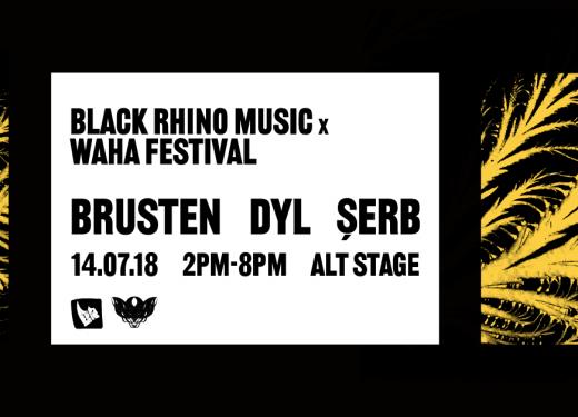 Black Rhino Music x Waha Festival showcase
